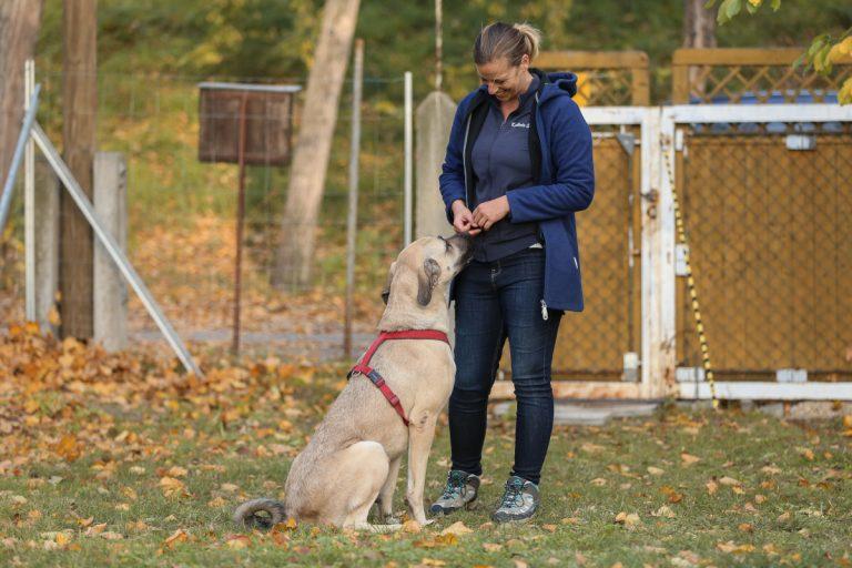 Kathrin im Hundegarten
