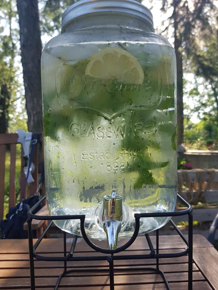 Minze Zitronen Wasser
